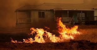 Wildfire Honey by Massive California Wildfire Near Yosemite Sparked By Gunfire
