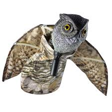 hr4913 owl with wings main01 jpg v u003d1492250629