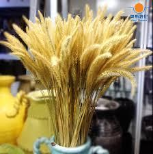 Dog Flower Arrangement Online Shop 20pcs Dried Natural Flower Bouquets Raw Color Dried
