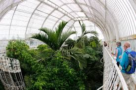 Garden Inside House by The Majestic Life Of Plants At Kew Gardens City In Focus