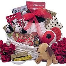 Pet Gift Baskets Amazon Com Great Arrivals Congrats On Your New Pooch Pet Dog