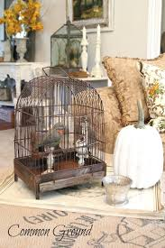 home interior bird cage 29 best bird cages images on pinterest bird cages birds and