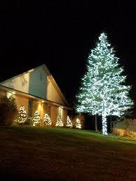 light a life tree lighting celebration memorial service