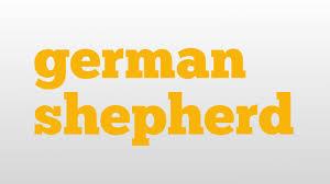 belgian shepherd malinois pronunciation german shepherd meaning and pronunciation youtube