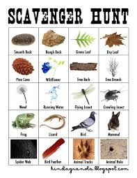 best 25 nature scavenger hunts ideas on pinterest scavenger