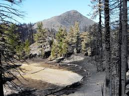 Wildfire Chicago by Famed U0027chicago Stump U0027 Sequoia Threatened By Massive California