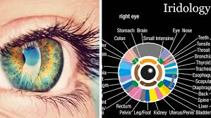 what does your iris reveal about your health