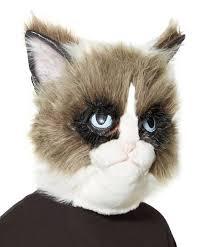 spirit halloween 2016 grumpy cat on twitter