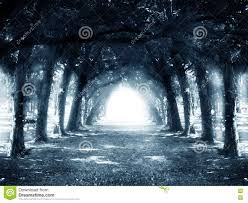 dark halloween background path in dark mystery forest stock photo image 77462338