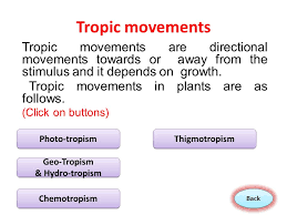 Tropic Movement In Plant