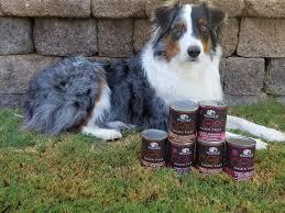 australian shepherd dog food high protein wellness core canned dog food tiffany u0027s diamond dogs