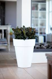 174 best pots planters and hanging baskets images on pinterest