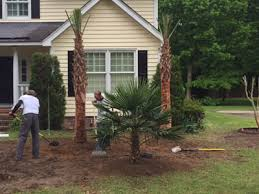 Landscaping Columbia Sc by Columbia Sc Landscaping Services For Residential U0026 Commercial