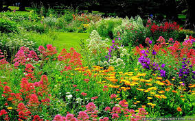 Types Of Garden Flowers - flower gardens with various types of flowers u2013 carehomedecor