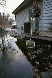 Aquascapes Of Ct Professional Pond Skimmer Installation Pricing Hamden New Haven