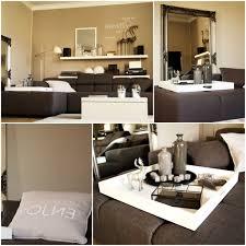 Wohnzimmer Regale Design Gemütliche Innenarchitektur Wohnzimmer Regal Dekorieren