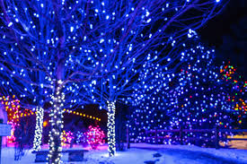 where you can see the sparkliest lights this year in