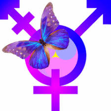transgriot why the butterfly to represent trans