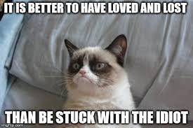 Lost Cat Meme - grumpy cat bed latest memes imgflip