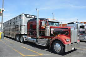 peterbilt show trucks pin by chuck e on wilson livestock trailers pinterest