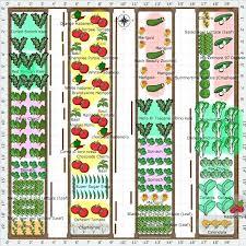 Garden Layout Software Vegetable Garden Layout Planner Software Software Garden
