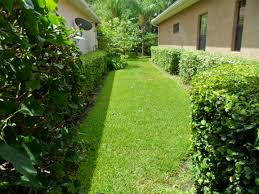 tampa drainage and erosion solutions drainage solutions tampa