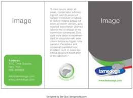 free tri fold brochure template 38 best free tri fold brochure templates images on