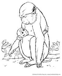 coloring pages of animals in their habitats wild animal coloring pages wild animals coloring pages and