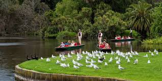 Botanical Gardens Melbourne Melbourne Highlights Day Tour With Punting At The Botanic Gardens