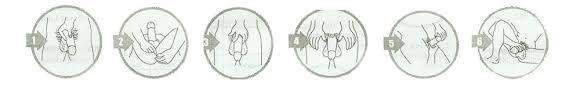 ciri ciri titan gel asli dan titan gel palsu distributor titan