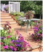Free Wood Deck Design Software by 25 Best Ideas About Free Deck Design Software On Pinterest Deck