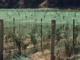 vine u0026 crop protection jim u0027s supply company inc