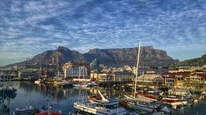 Seeking Cape Town Seeking A New Overseas Don T Leave Your Cat The