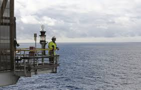 norway offshore oil seen luring smaller fry as big fish retreat