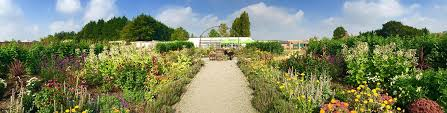 walled kitchen garden and orchard preston park museum and grounds