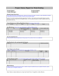 summary report template summary report template resume
