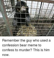 Confession Bear Meme - remember the guy who used a confession bear meme to confess to