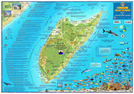 Map Caribbean Sea by Cozumel Dive U0026 Adventure Guide Franko Maps Waterproof Map Franko