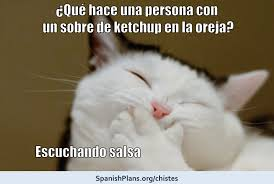 Spanish Word Of The Day Meme - chistes for spanish class spanishplans org