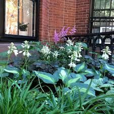 Urban Garden Supply - i want more stones