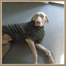 pet sweaters crochet sweater pattern for large dogs crochet and knit