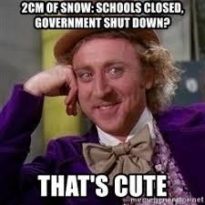 Shut Down Meme - 2cm of snow schools closed government shut down that s cute