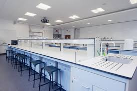 lab bench molecular biology labs available for hire department of biological sciences