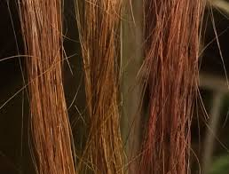 lighten you dyed black hair naturally how to remove henna and herbal hair dye from your hair