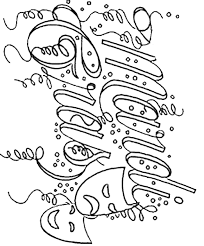 mardi gras coloring pages free printable coloringstar