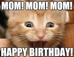 Grumpy Cat Meme Happy Birthday - best happy birthday memes collection