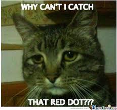 Depressed Cat Meme - depressed cat by burnedbyhand meme center