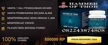 toko agen obat hammer of thor082243874808