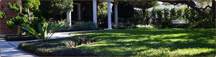 Lawn And Landscape by Central Florida Landscaping Photos Brevard County Landscape