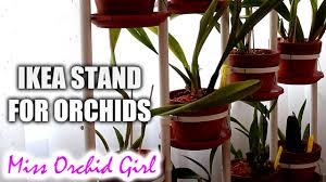 using ikea plant stand socker with orchids youtube